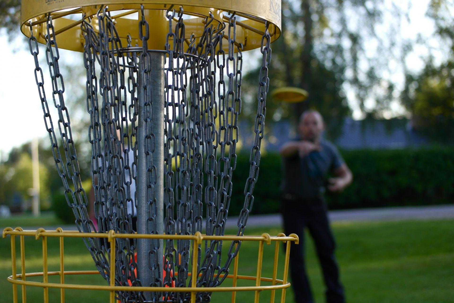 Frisbee-golfaamista.