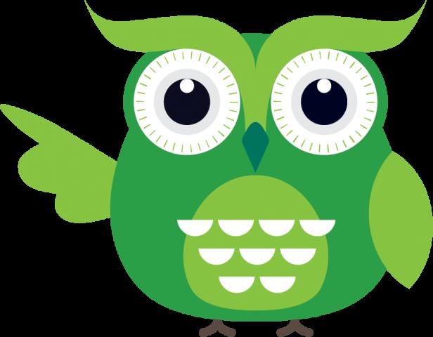 Vihreä pöllö, joka on selkis-hyllyn logo